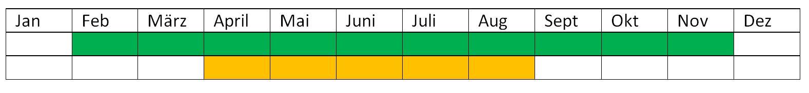 Terminplan_Hausrotschwanz