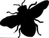 Biene Symbol dunkel