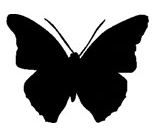 Schmetterling Symbol